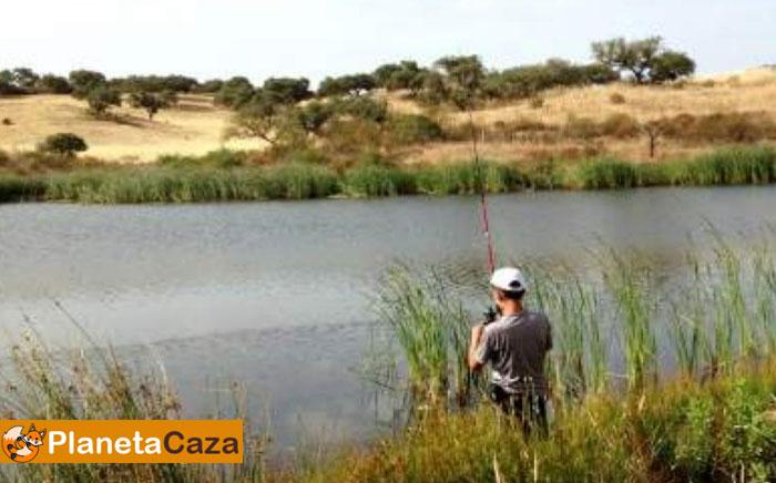 cuando se puede ir a pescar
